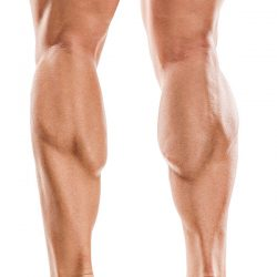 calves-sculpting